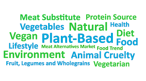 PLANT BASED TRENDS-Hydrocolloids Supplier Manufacturer in China