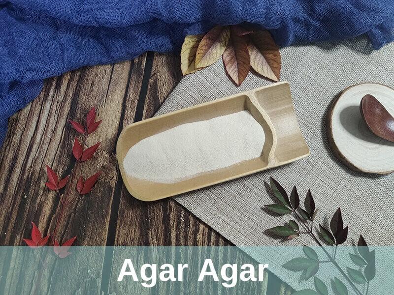 agar-agar technology