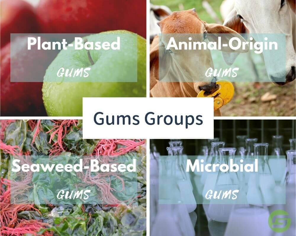 Gums groups: Plant-based gums, Animal-origin gums, seaweed-based gums, microbial gums
