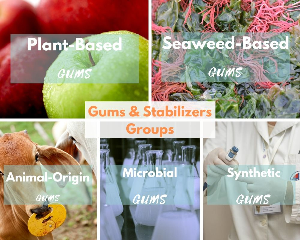 Gums Stabilizers groups: Plant-based gums, Animal-origin gums, seaweed-based gums, microbial gums, Synthetic gums_Food Hydrocolloids