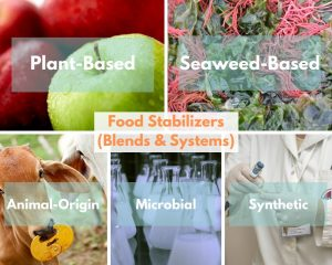 Food Stabilizers (Blends & Systems) groups: Plant-based gums, Animal-origin gums, seaweed-based gums, microbial gums, Synthetic gums