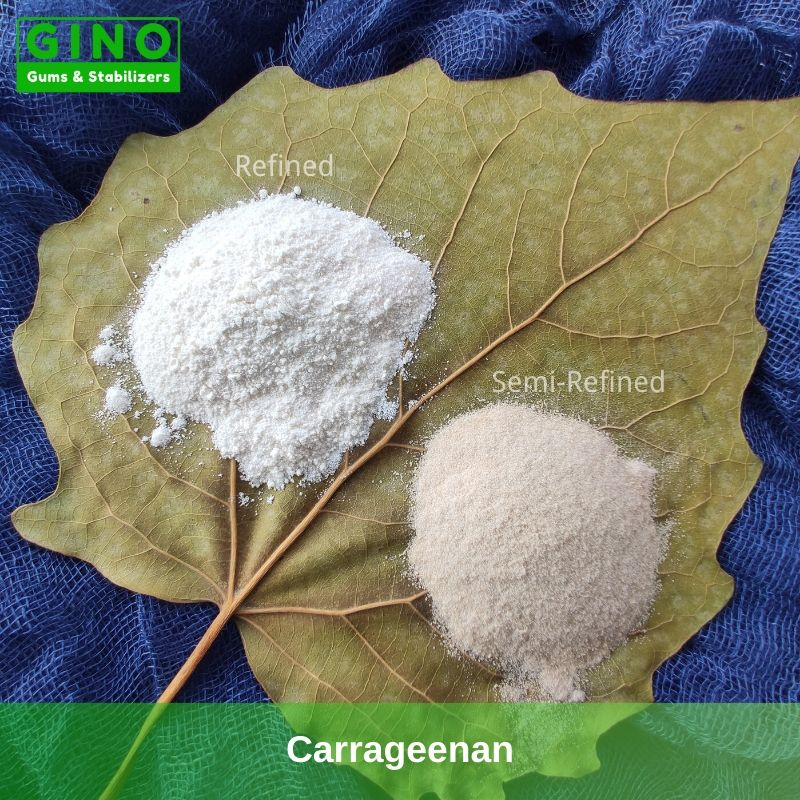 Carrageenan Manufacturers 2020 Supplier Manufacturer in China(4) - Gino Gums Stabilizers