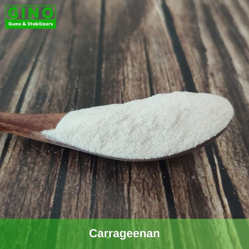 Carrageenan Producers 2020 Supplier Manufacturer in China(1) - Gino Gums Stabilizers