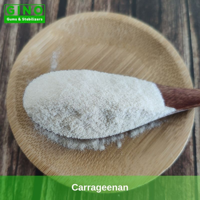 Carrageenan 2020 Supplier Manufacturer in China(2) - Gino Gums Stabilizers