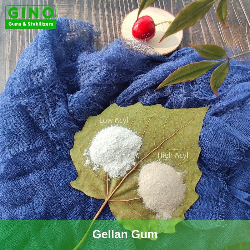 Gellan Gum Manufacturer Supplier in China(1) - Gino Gums Stabilizers
