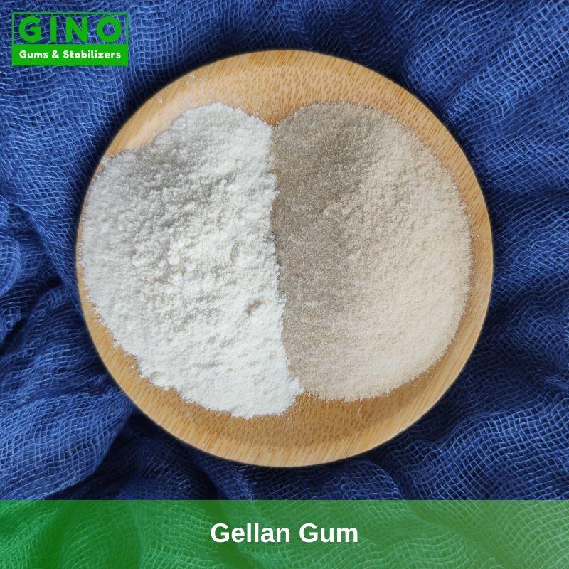 Gellan Gum 2020 Supplier Manufacturer in China(3) - Gino Gums Stabilizers