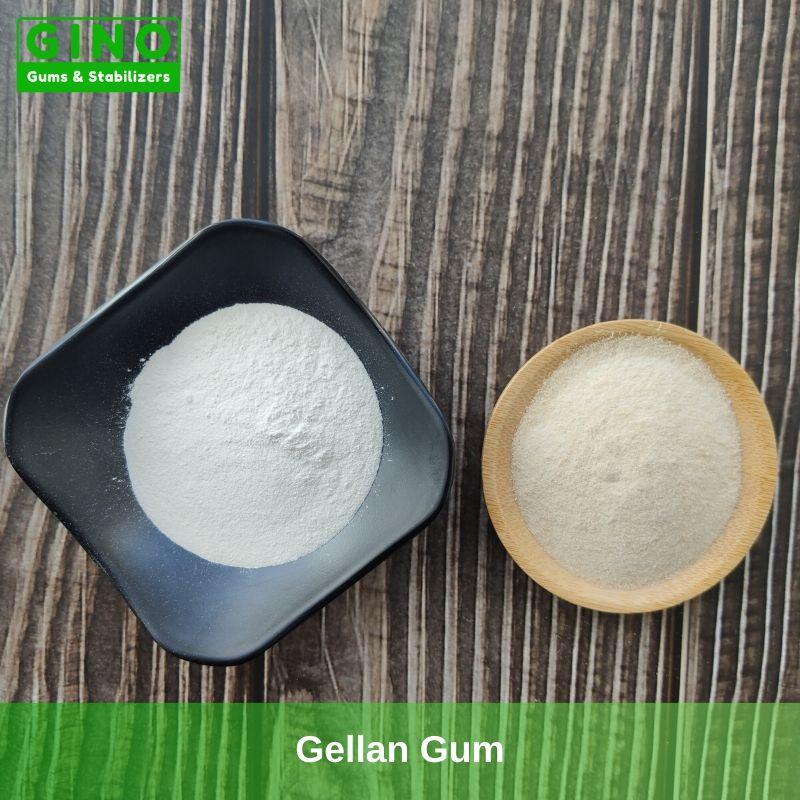 Gellan Gum 2020 Supplier Manufacturer in China(4) - Gino Gums Stabilizers