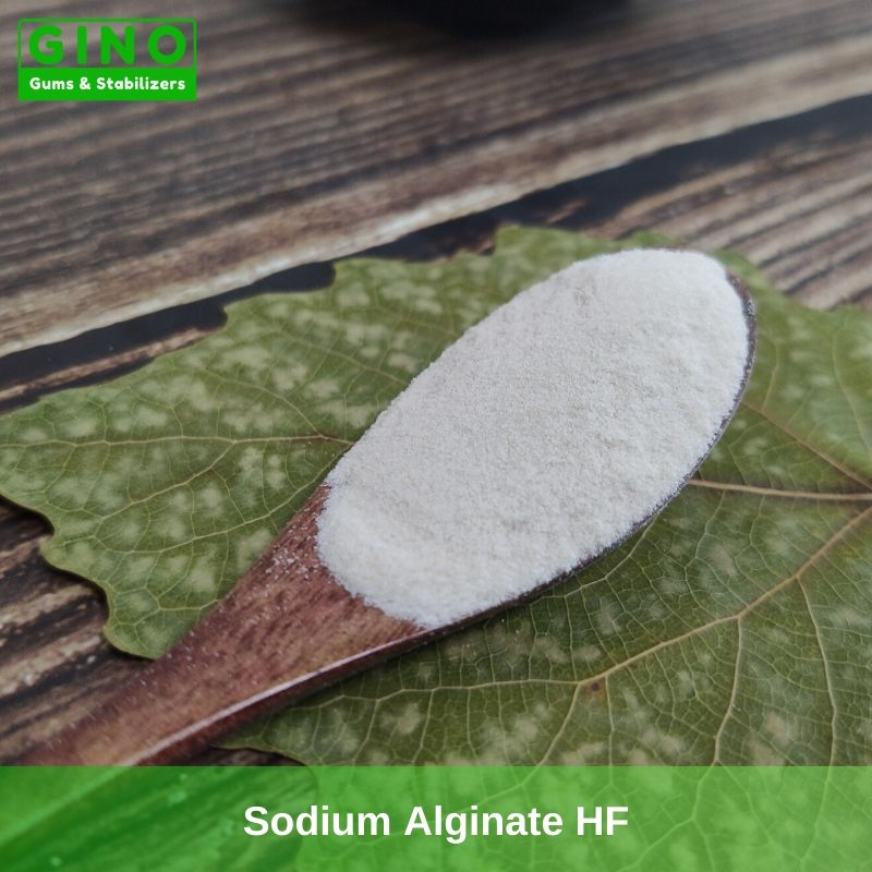 Sodium Alginate HF Supplier Manufacturer in China(1) - Gino Gums Stabilizers