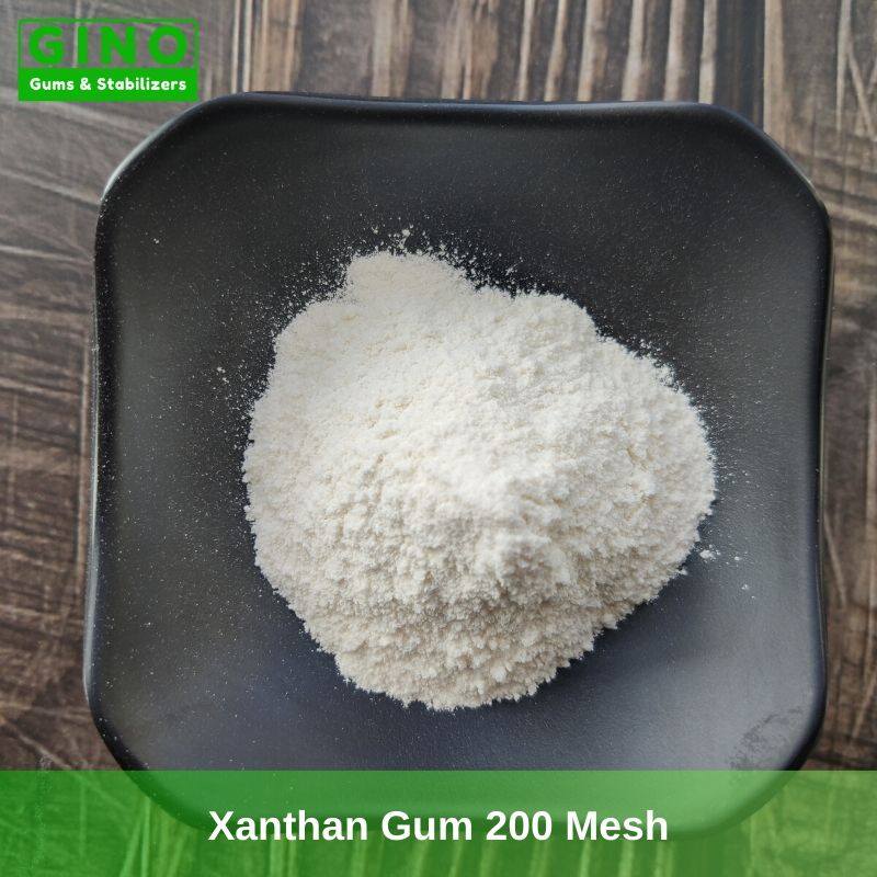 Xanthan Gum 200 Mesh Supplier Manufacturer in China (1) - Gino Gums Stabilizers