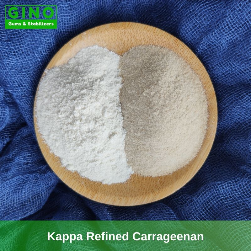 White Refined Kappa Carrageenan Supplier Manufacturer in China