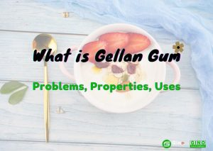 what is gellan gum? Problems, Properties and Uses