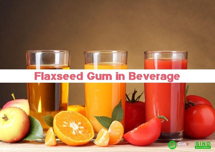 Flaxseed Gum in Beverage 874-620 (1)