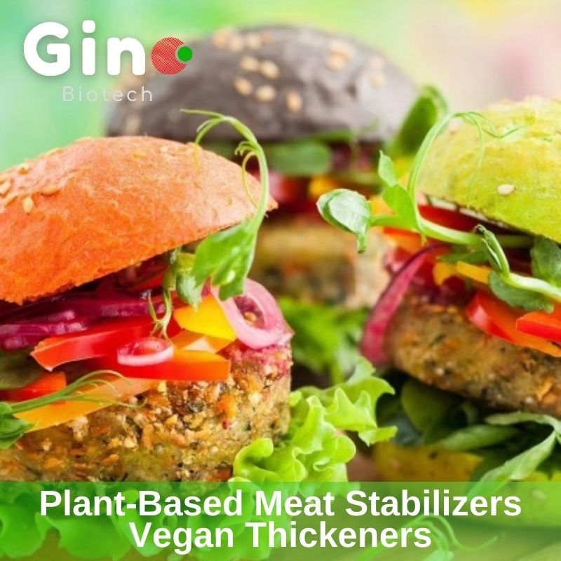 Gino Biotech- Plant-based Meat Stabilizers Vegan Thickeners (1)