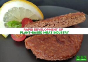 Rapid Development of Plant-Based Meat Industry (2)
