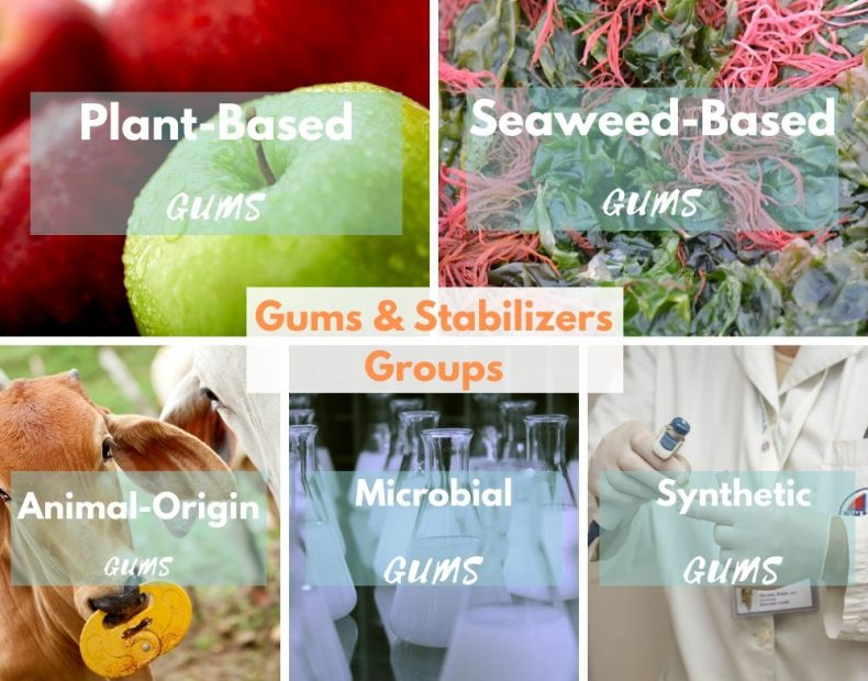 Gums Stabilizers groups: Plant-based gums, Animal-origin gums, seaweed-based gums, microbial gums, Synthetic gums