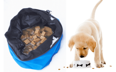 Pet food-Hydrocolloids Supplier Manufacturer in China