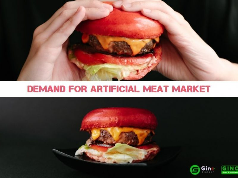 demand for artificial meat market 874-620 (2)